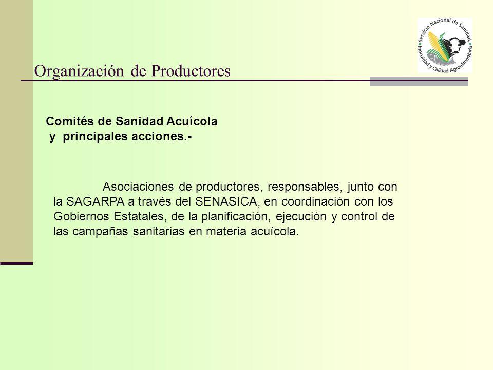 Organización de Productores