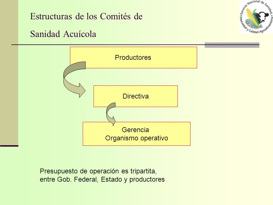 Estructuras de los Comités de Sanidad Acuícola