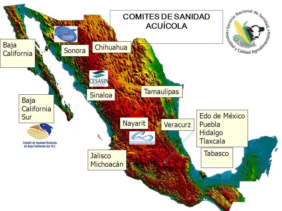 COMITES DE SANIDAD ACUÍCOLA