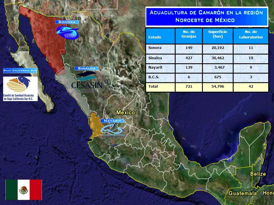EstadoNo. de Granjas. Superficie (has) No. de. Laboratorios. Sonora. 149. 20,192. 11. Sinaloa. 427.