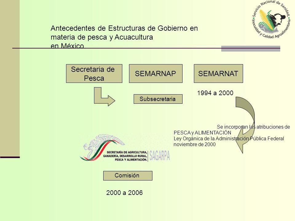 Antecedentes de Estructuras de Gobierno en materia de pesca y Acuacultura