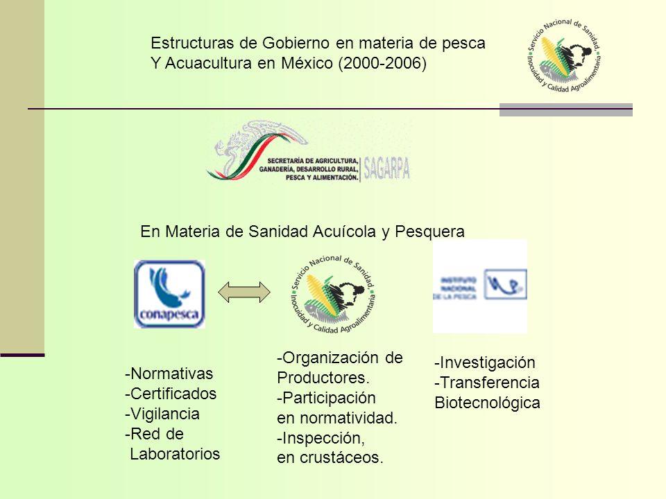 Estructuras de Gobierno en materia de pesca