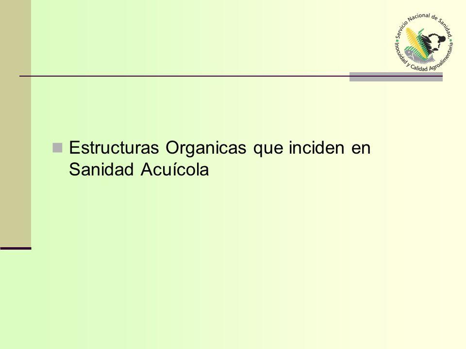 Estructuras Organicas que inciden en Sanidad Acuícola