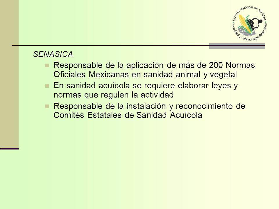 SENASICA Responsable de la aplicación de más de 200 Normas Oficiales Mexicanas en sanidad animal y vegetal.