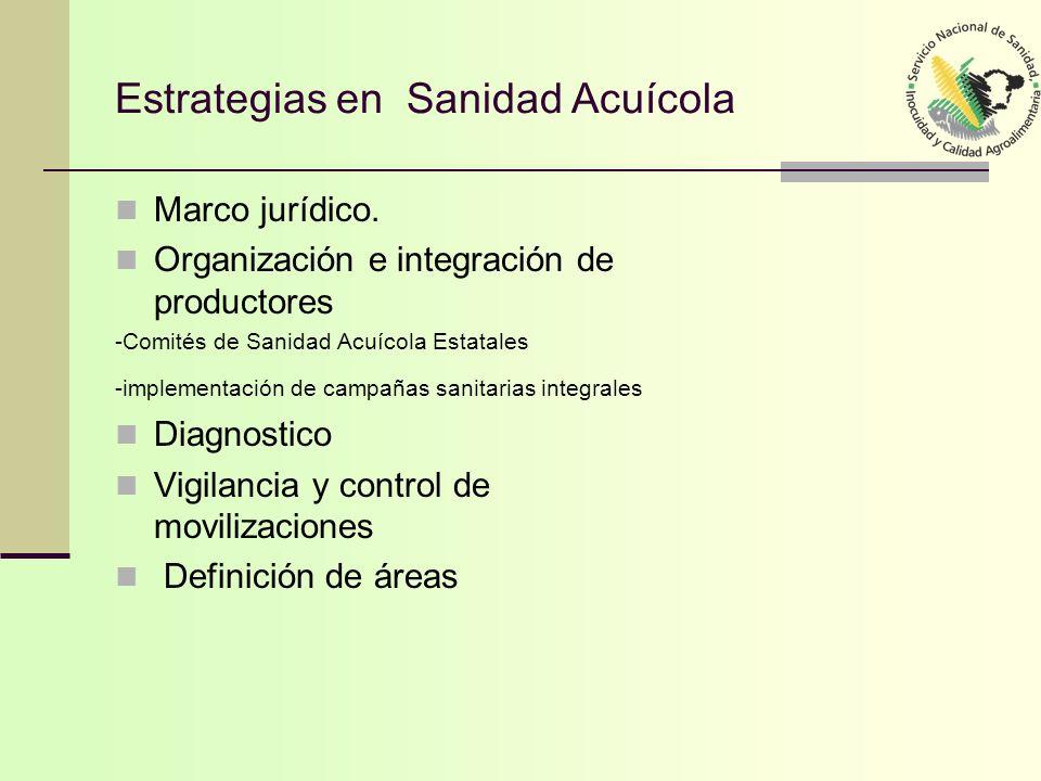 Estrategias en Sanidad Acuícola