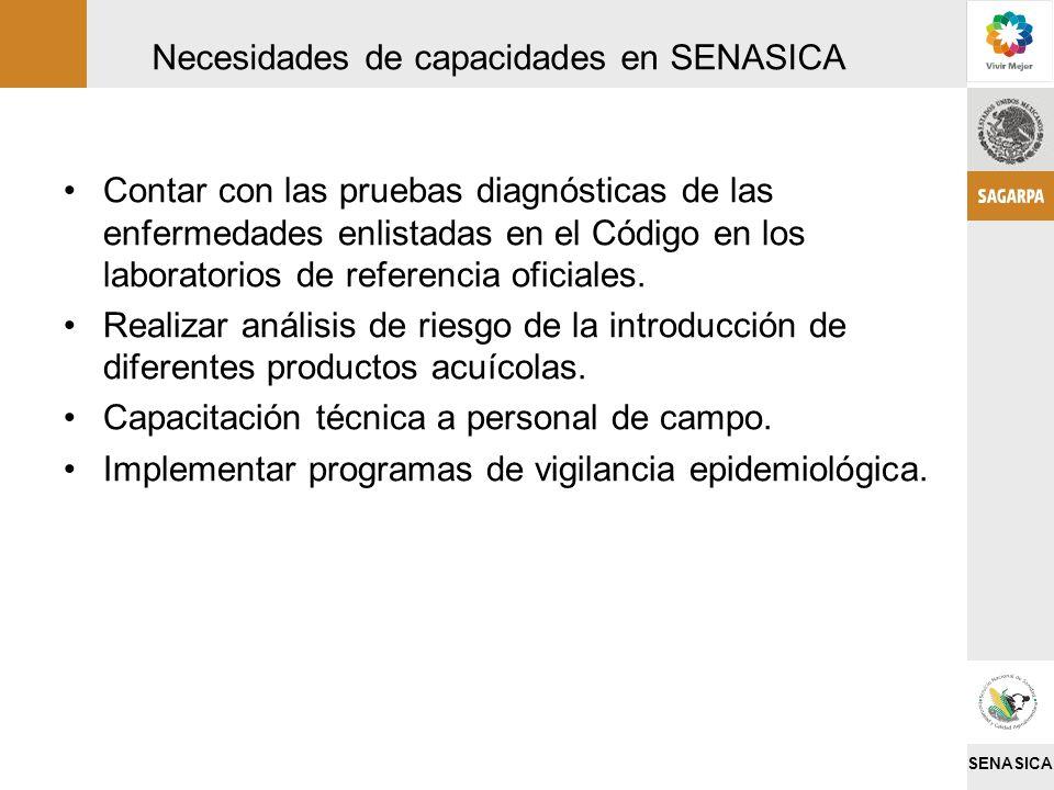 Necesidades de capacidades en SENASICA