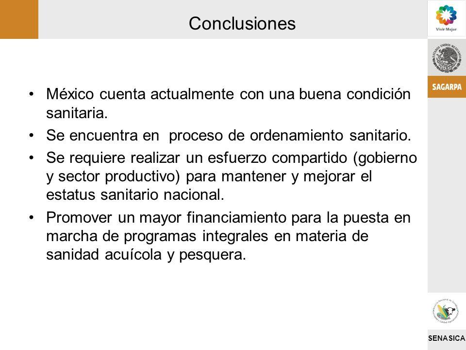 Conclusiones México cuenta actualmente con una buena condición sanitaria. Se encuentra en proceso de ordenamiento sanitario.