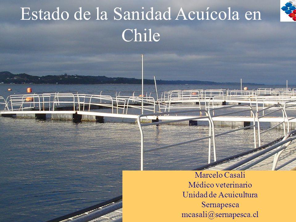 Estado de la Sanidad Acuícola en Chile