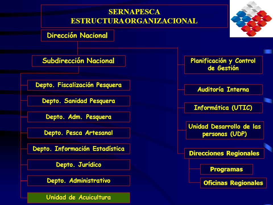 SERNAPESCA ESTRUCTURA ORGANIZACIONAL