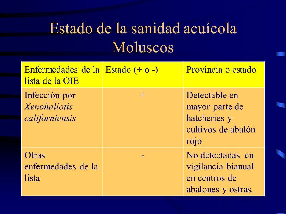 Estado de la sanidad acuícola Moluscos