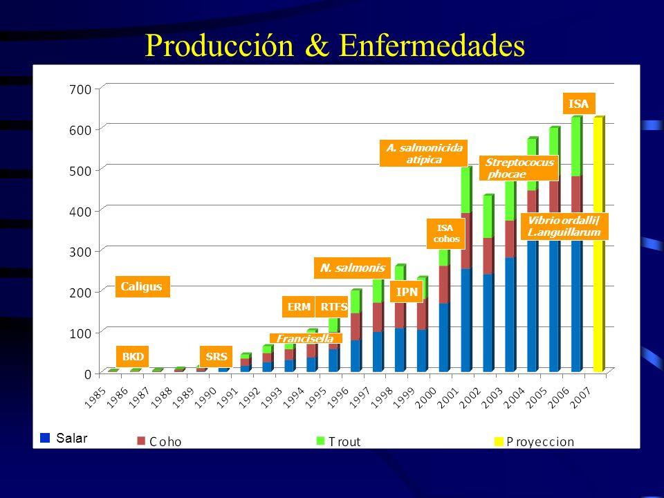 Producción & Enfermedades