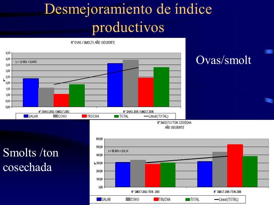 Desmejoramiento de índice productivos