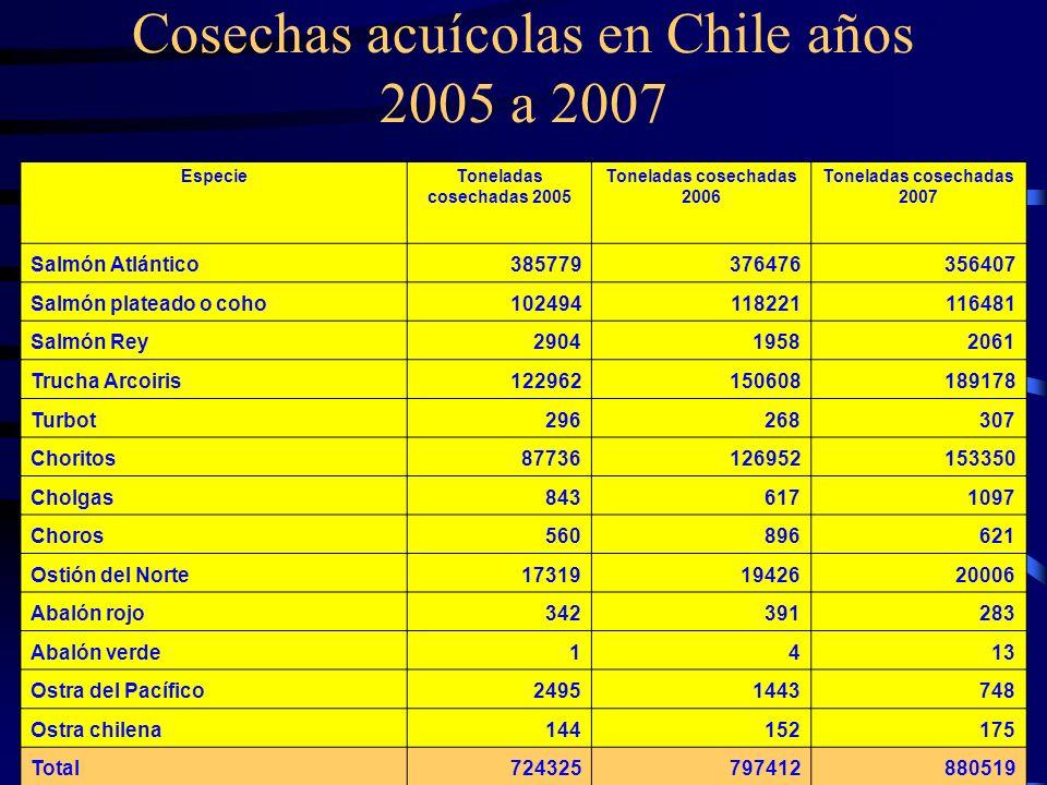 Cosechas acuícolas en Chile años 2005 a 2007