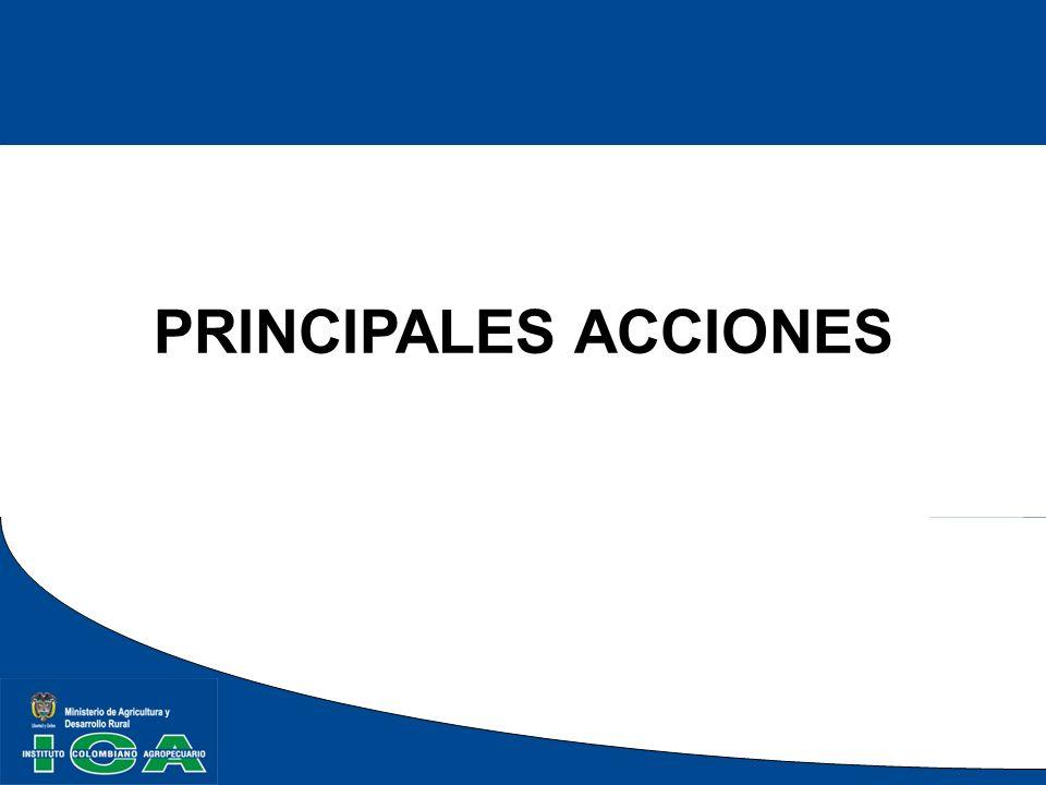 PRINCIPALES ACCIONES