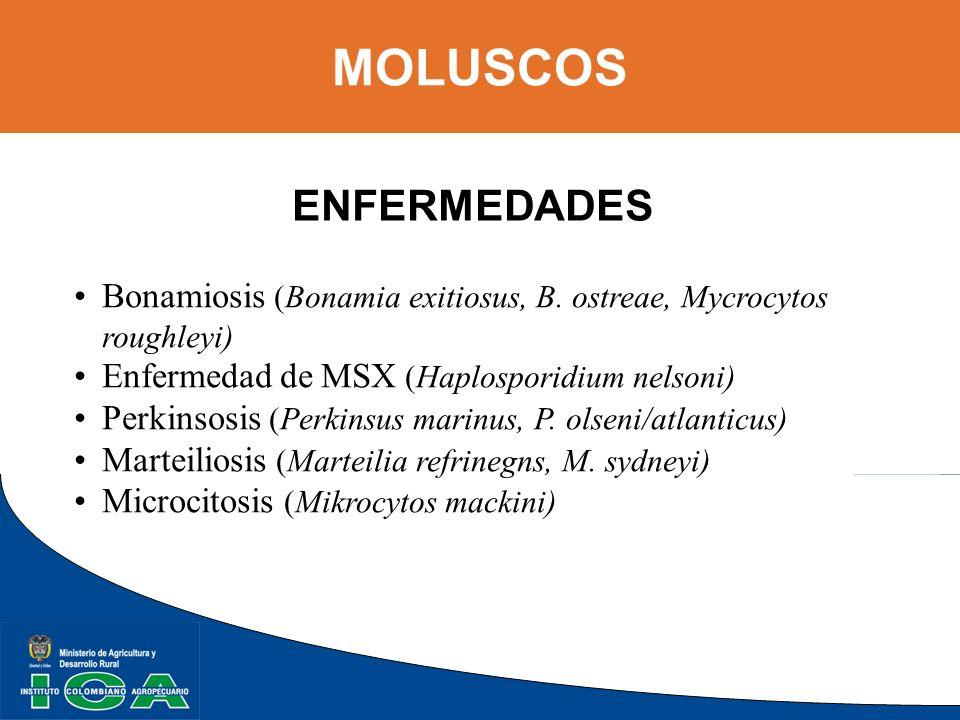 MOLUSCOS ENFERMEDADES