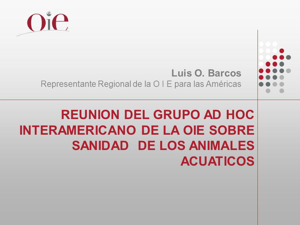 Luis O. Barcos Representante Regional de la O I E para las Américas.