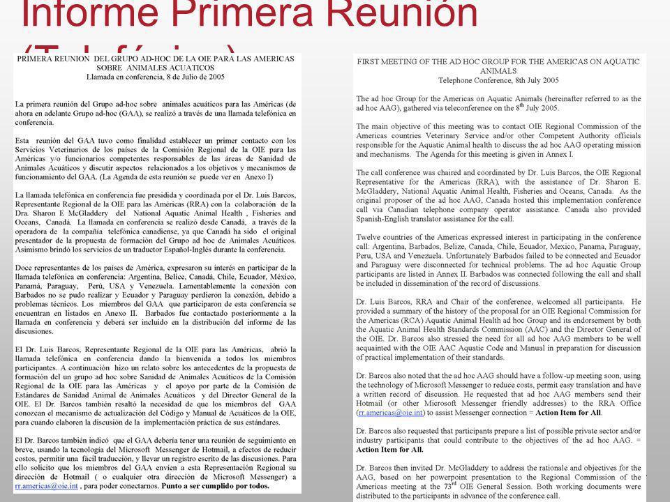 Informe Primera Reunión (Telefónica)