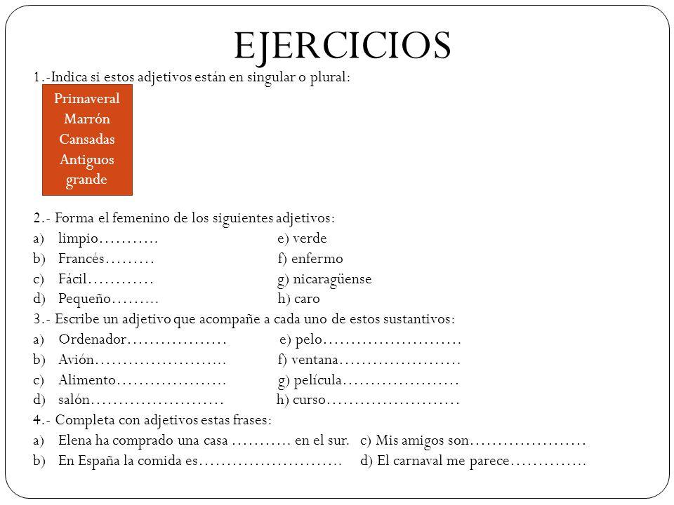 EJERCICIOS 1.-Indica si estos adjetivos están en singular o plural: