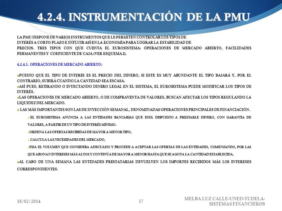 4.2.4. INSTRUMENTACIÓN DE LA PMU