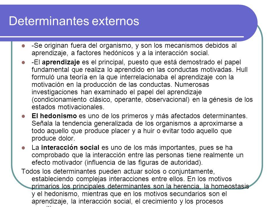 Determinantes externos