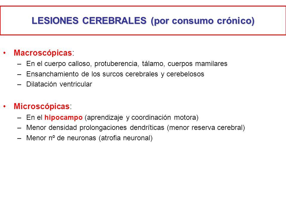 LESIONES CEREBRALES (por consumo crónico)