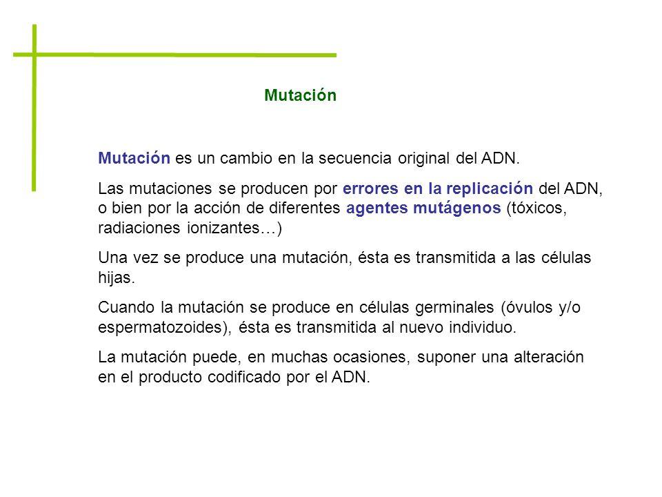 Mutación Mutación es un cambio en la secuencia original del ADN.