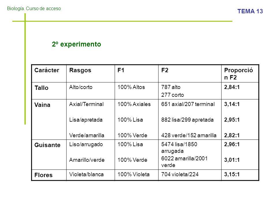2º experimento Carácter Rasgos F1 F2 Proporción F2 Tallo Vaina