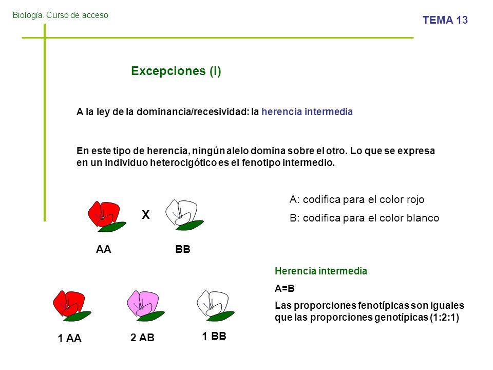 Excepciones (I) X A: codifica para el color rojo