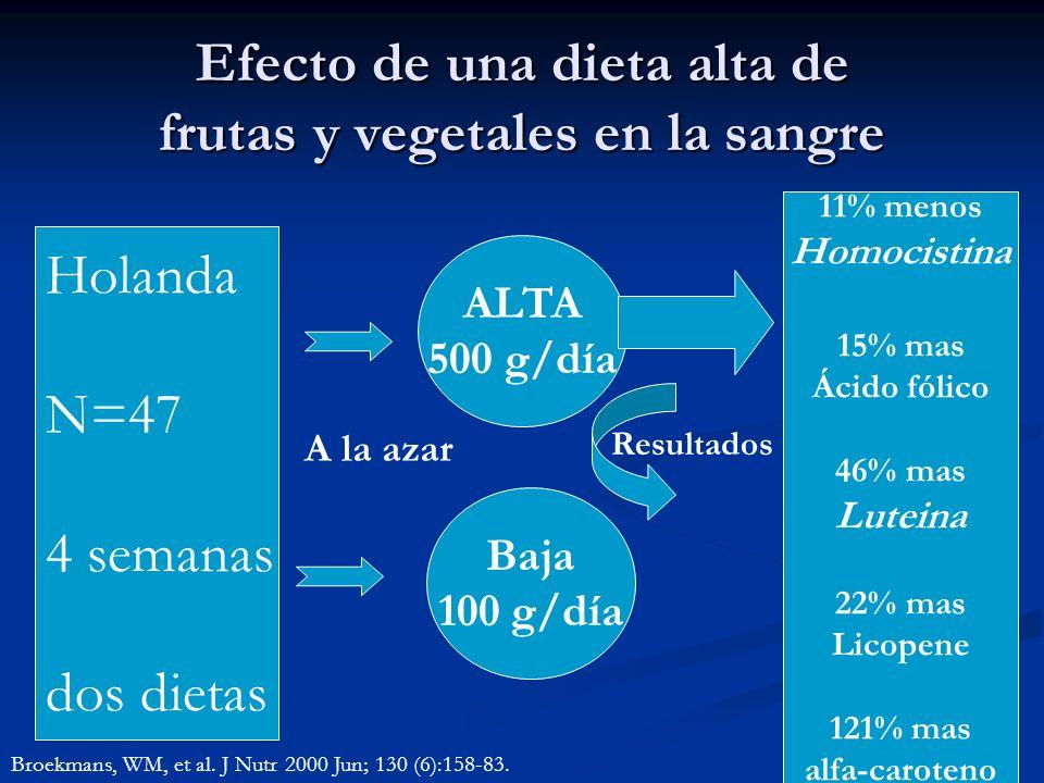 Efecto de una dieta alta de frutas y vegetales en la sangre