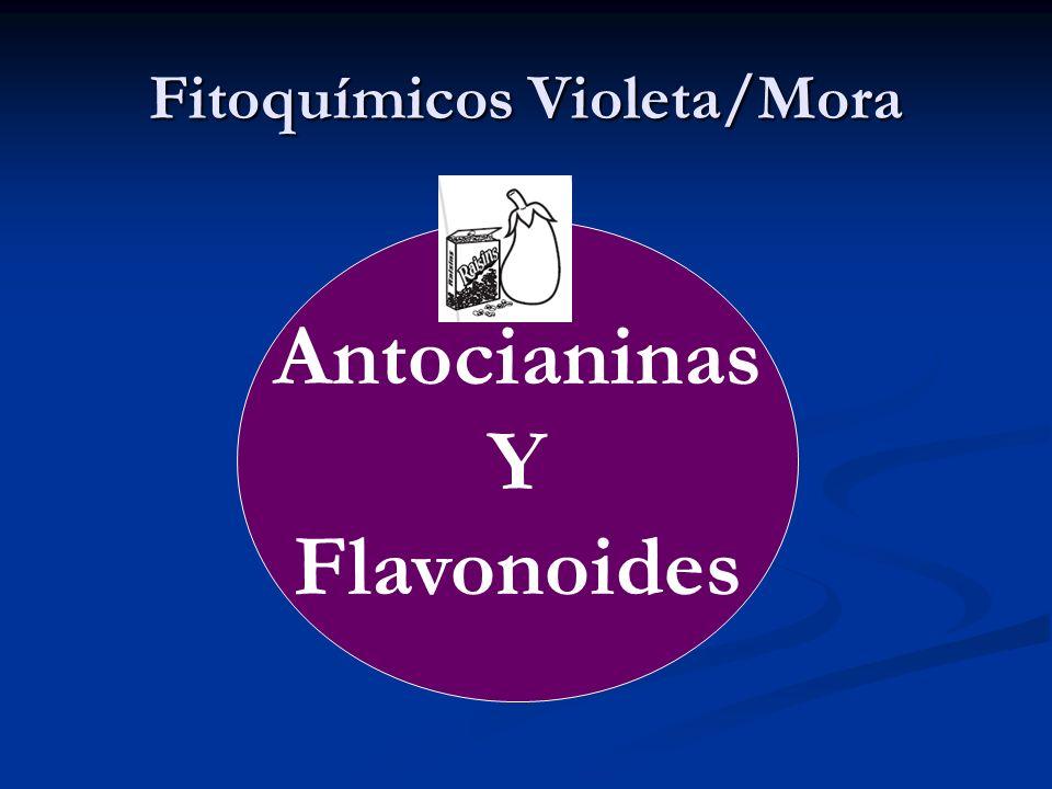 Fitoquímicos Violeta/Mora