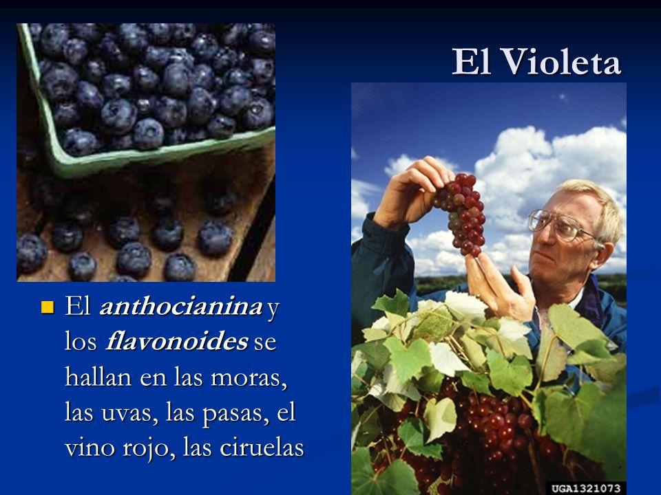 El Violeta El anthocianina y los flavonoides se hallan en las moras, las uvas, las pasas, el vino rojo, las ciruelas.