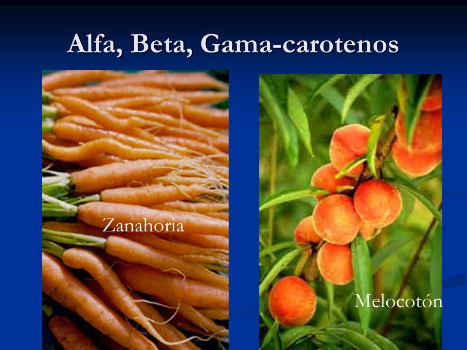 Alfa, Beta, Gama-carotenos