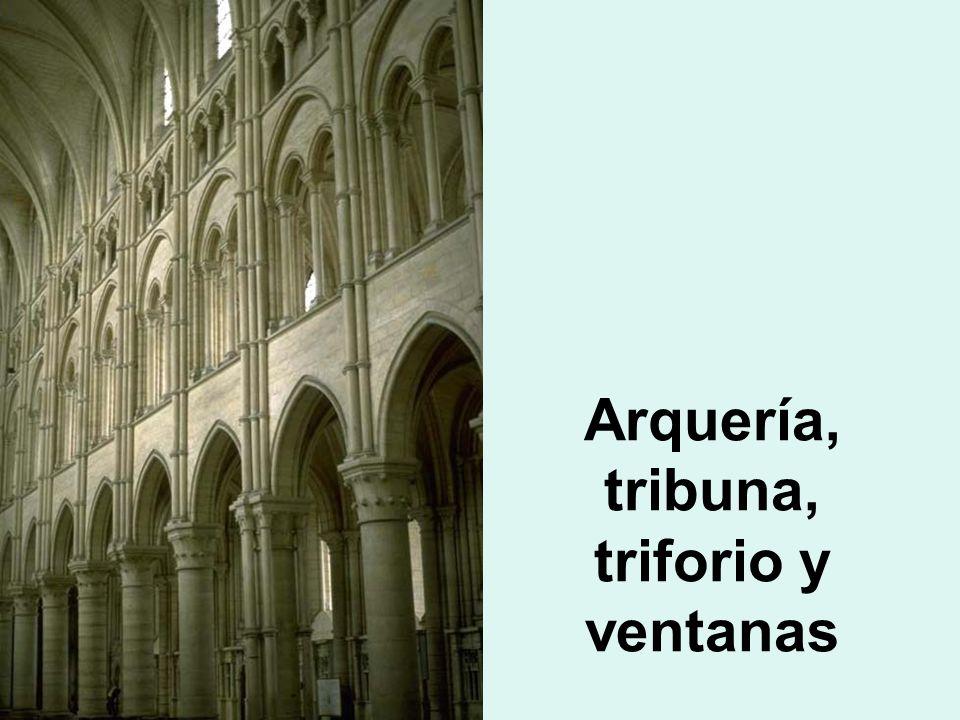 Arquería, tribuna, triforio y ventanas