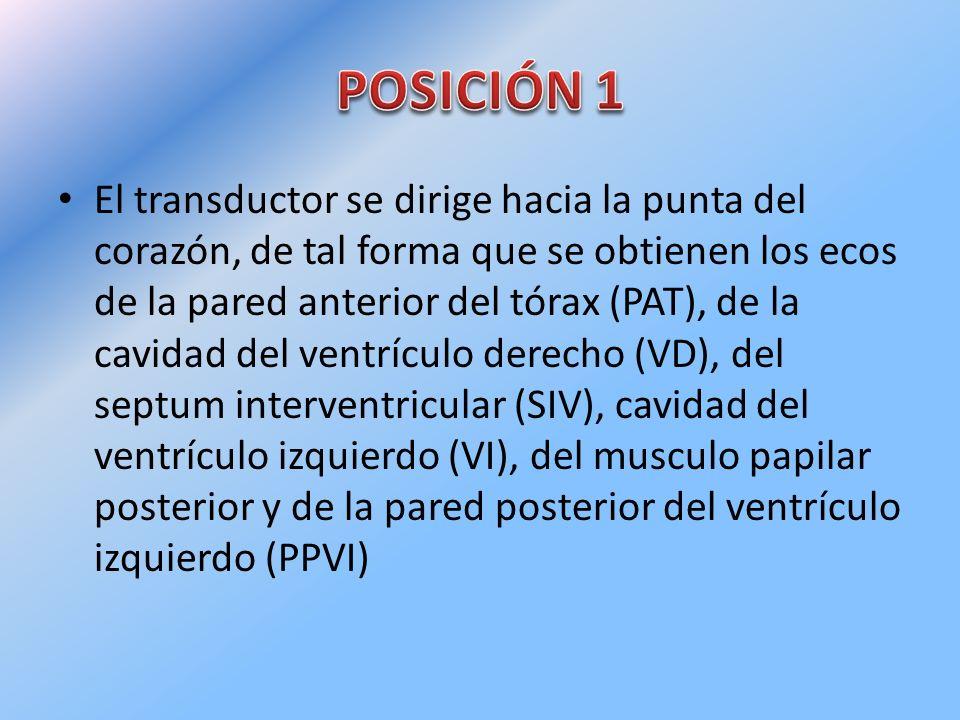 POSICIÓN 1