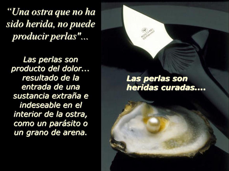 Una ostra que no ha sido herida, no puede producir perlas ...