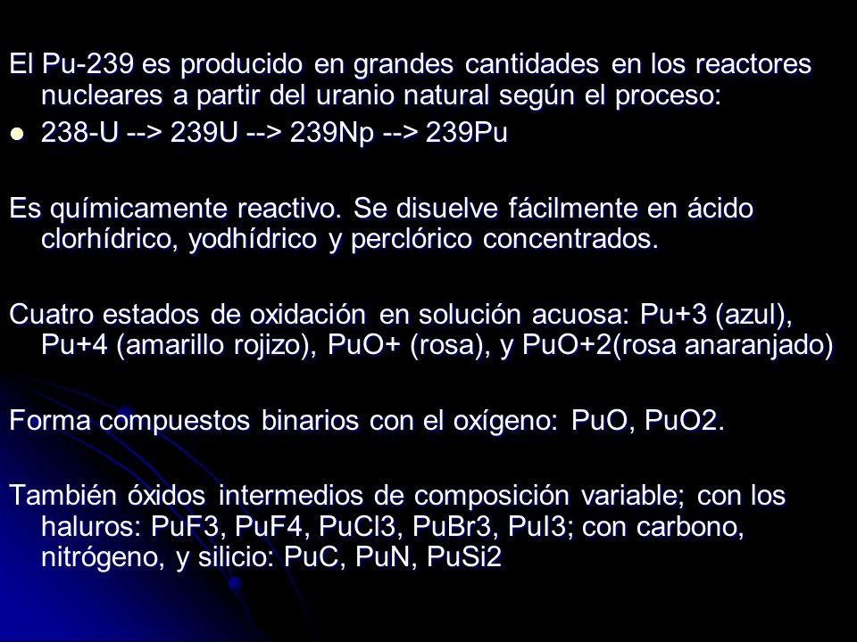 El Pu-239 es producido en grandes cantidades en los reactores nucleares a partir del uranio natural según el proceso: