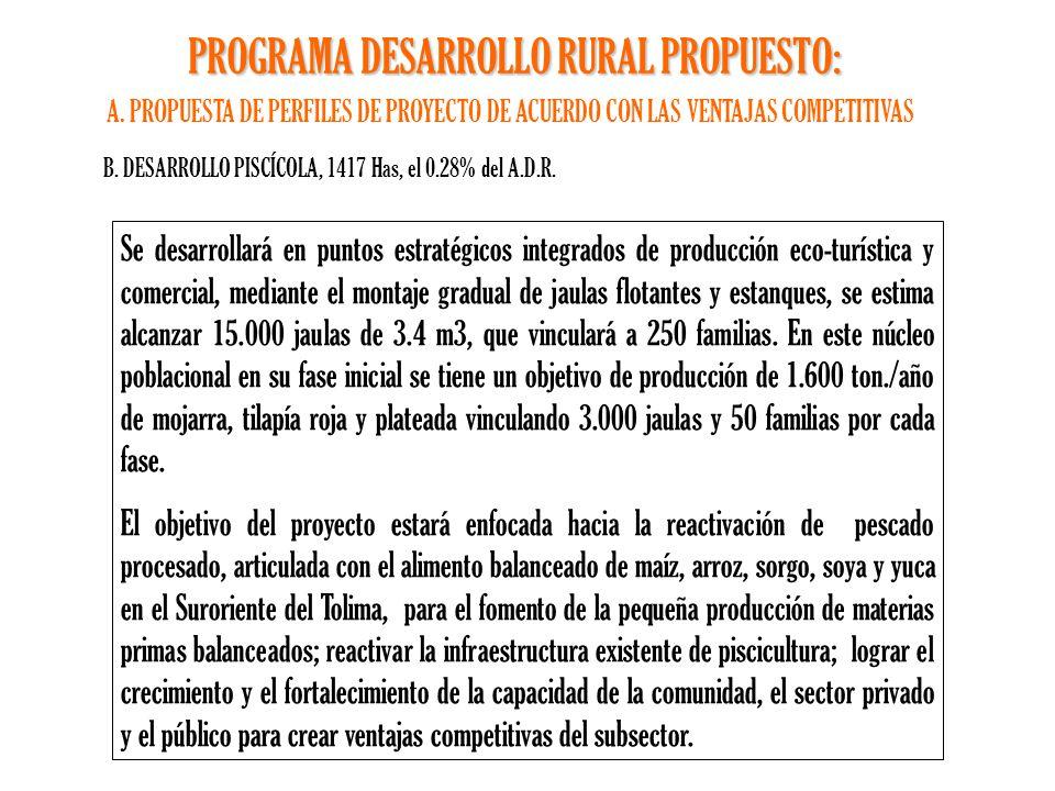 Programa de desarrollo rural 5 a os ppt descargar for Proyecto de piscicultura mojarra roja