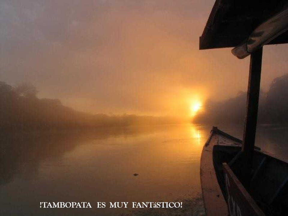 !TAMBOPATA ES MUY FANTáSTICO!