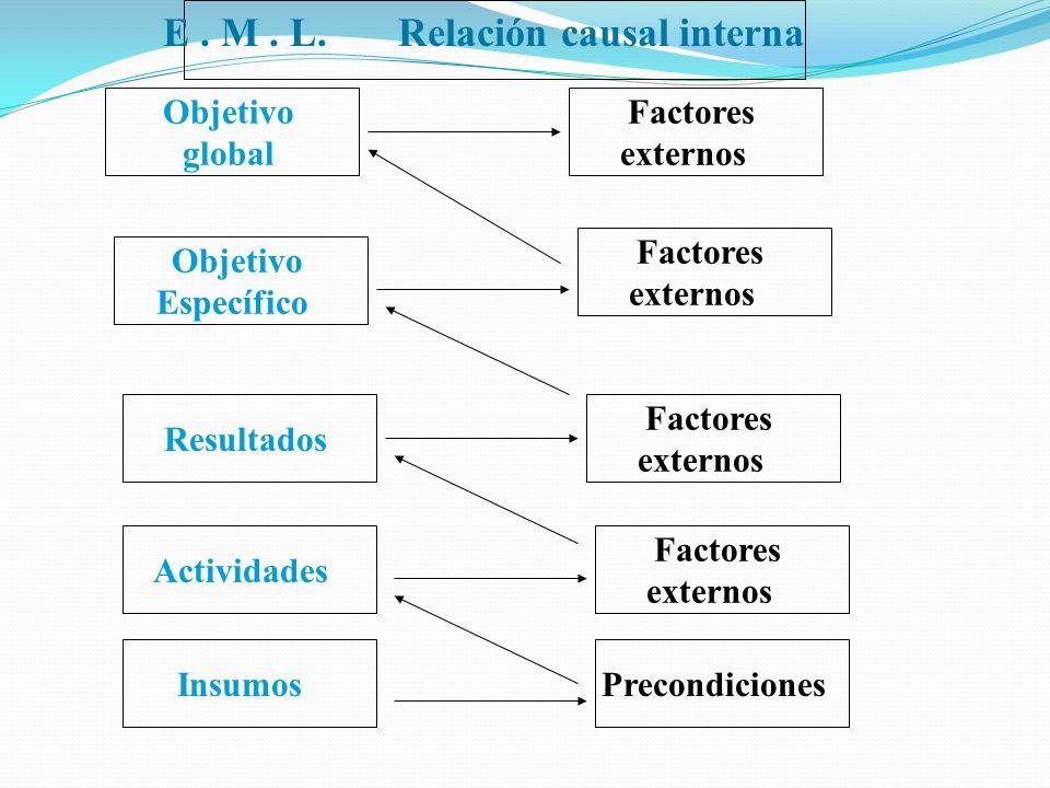 E . M . L. Relación causal interna