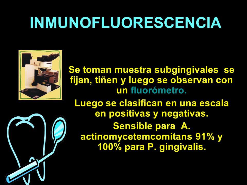 INMUNOFLUORESCENCIASe toman muestra subgingivales se fijan, tiñen y luego se observan con un fluorómetro.