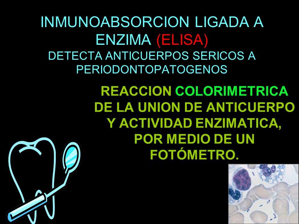 INMUNOABSORCION LIGADA A ENZIMA (ELISA) DETECTA ANTICUERPOS SERICOS A PERIODONTOPATOGENOS