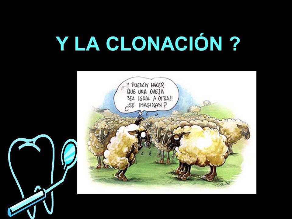 Y LA CLONACIÓN