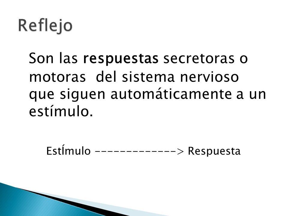 Reflejo Son las respuestas secretoras o motoras del sistema nervioso que siguen automáticamente a un estímulo.