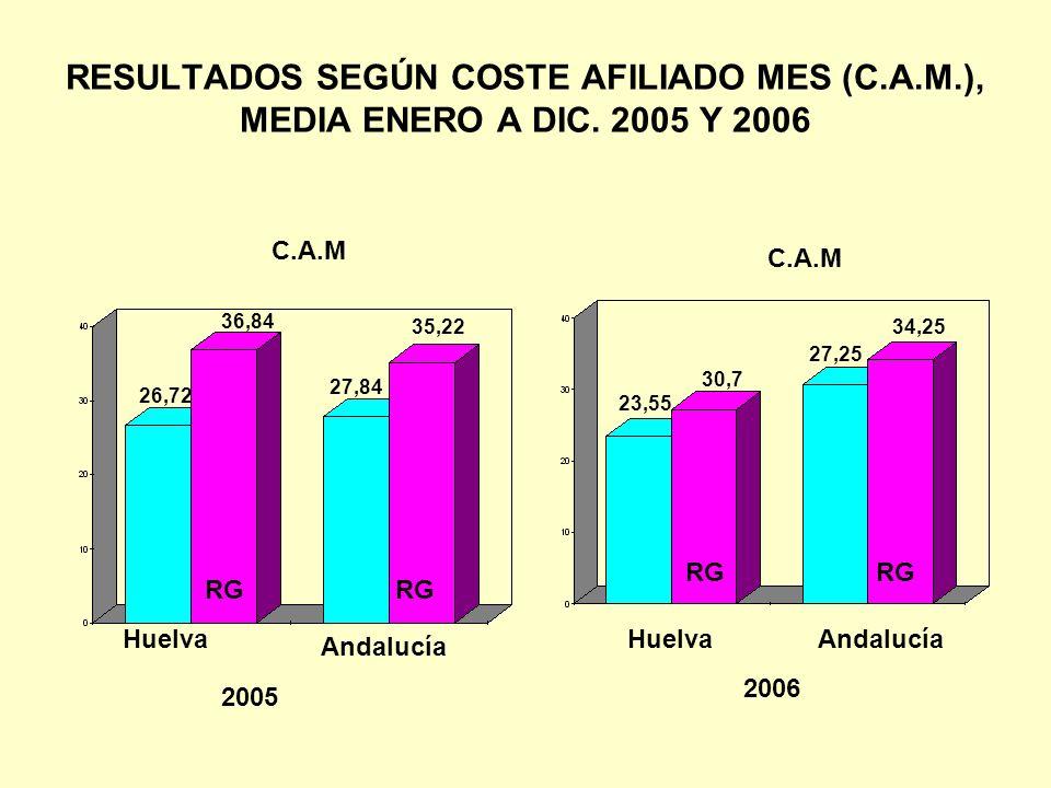 RESULTADOS SEGÚN COSTE AFILIADO MES (C. A. M. ), MEDIA ENERO A DIC