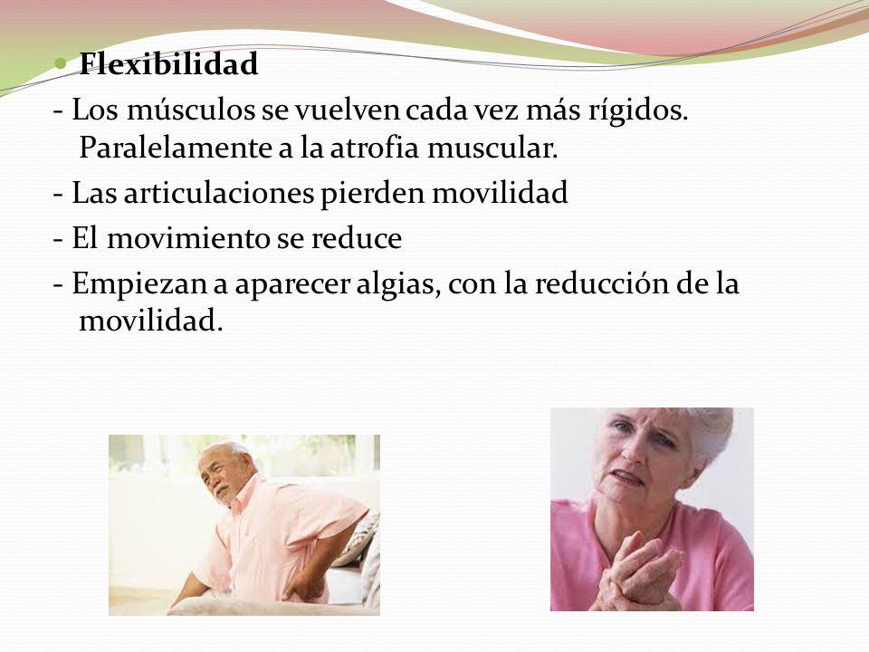 Flexibilidad - Los músculos se vuelven cada vez más rígidos. Paralelamente a la atrofia muscular. - Las articulaciones pierden movilidad.