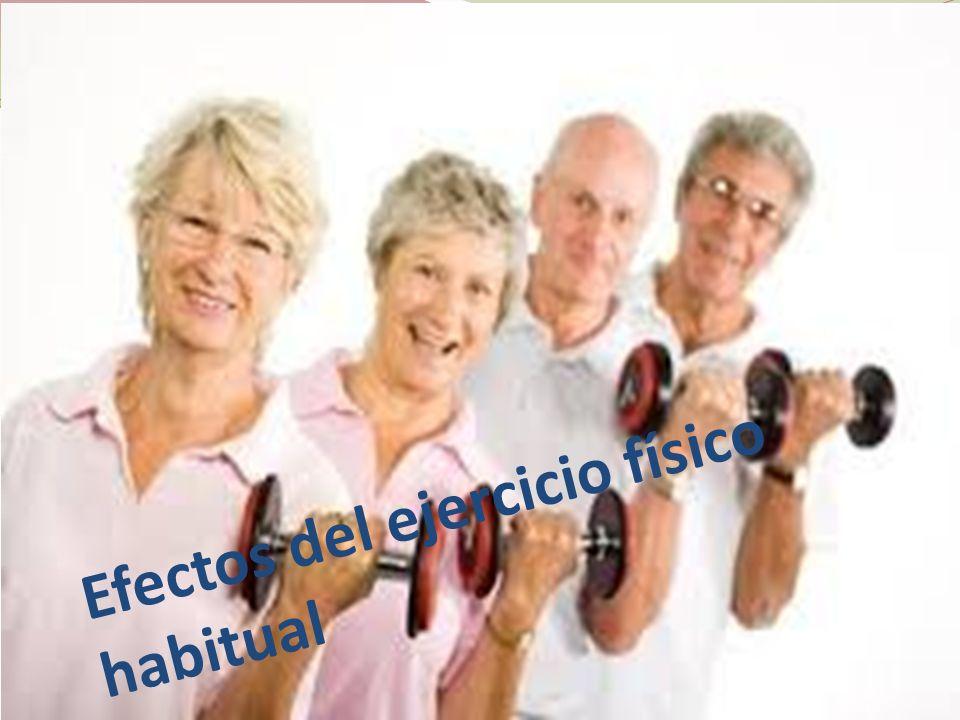 Efectos del ejercicio físico habitual