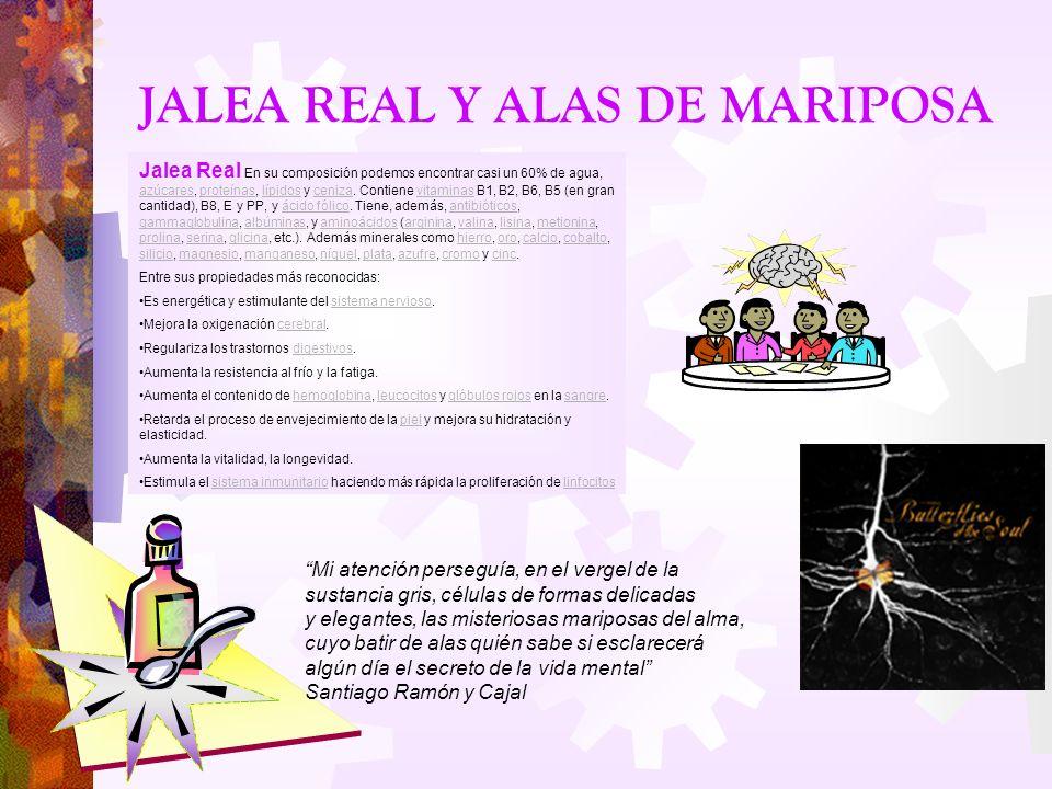 JALEA REAL Y ALAS DE MARIPOSA