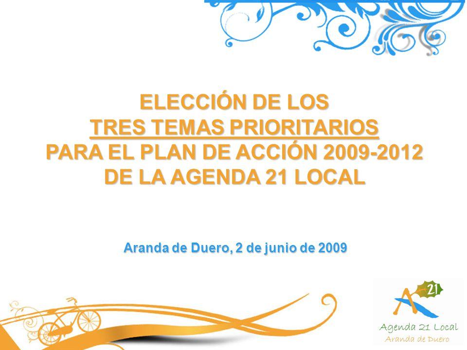 TRES TEMAS PRIORITARIOS Aranda de Duero, 2 de junio de 2009