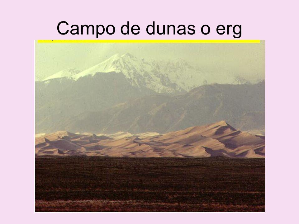 Campo de dunas o erg