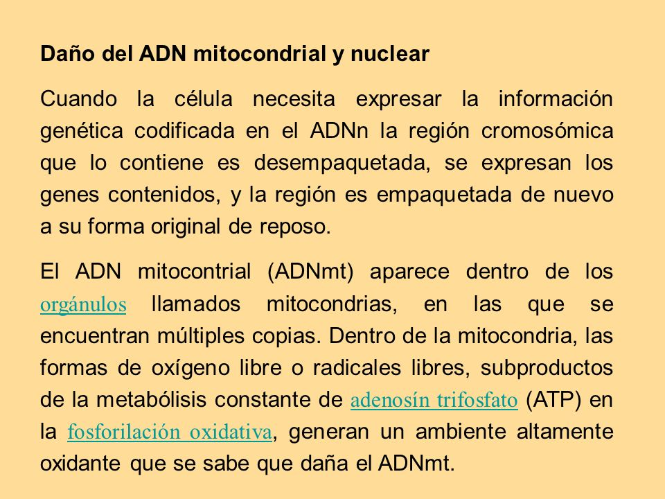 Daño del ADN mitocondrial y nuclear